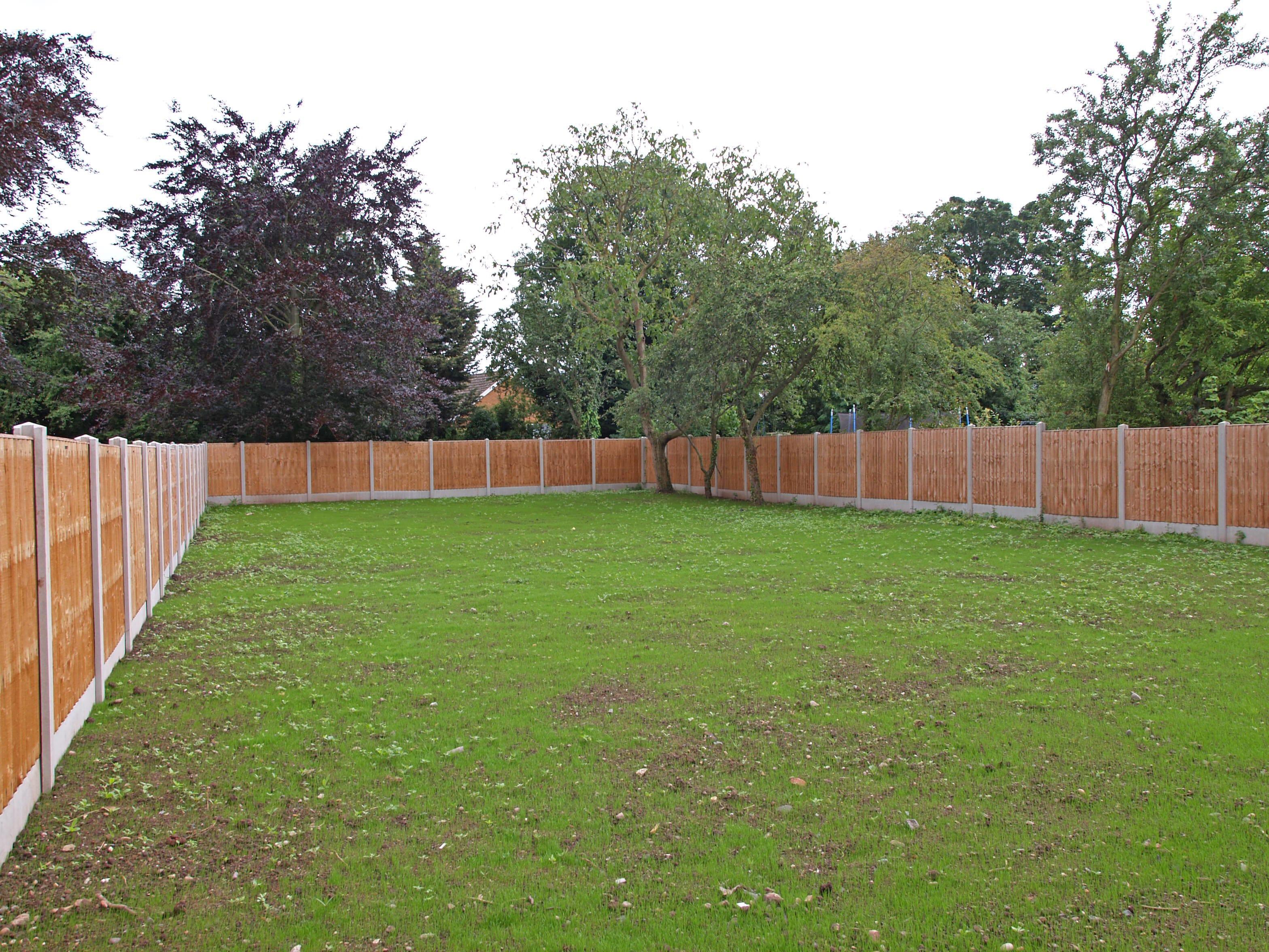 44B Bellars Lane, garden 2